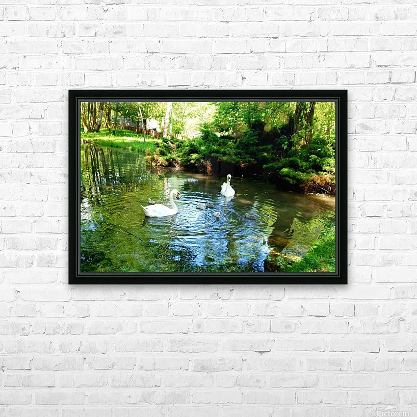 swan 11 HD Sublimation Metal print with Decorating Float Frame (BOX)