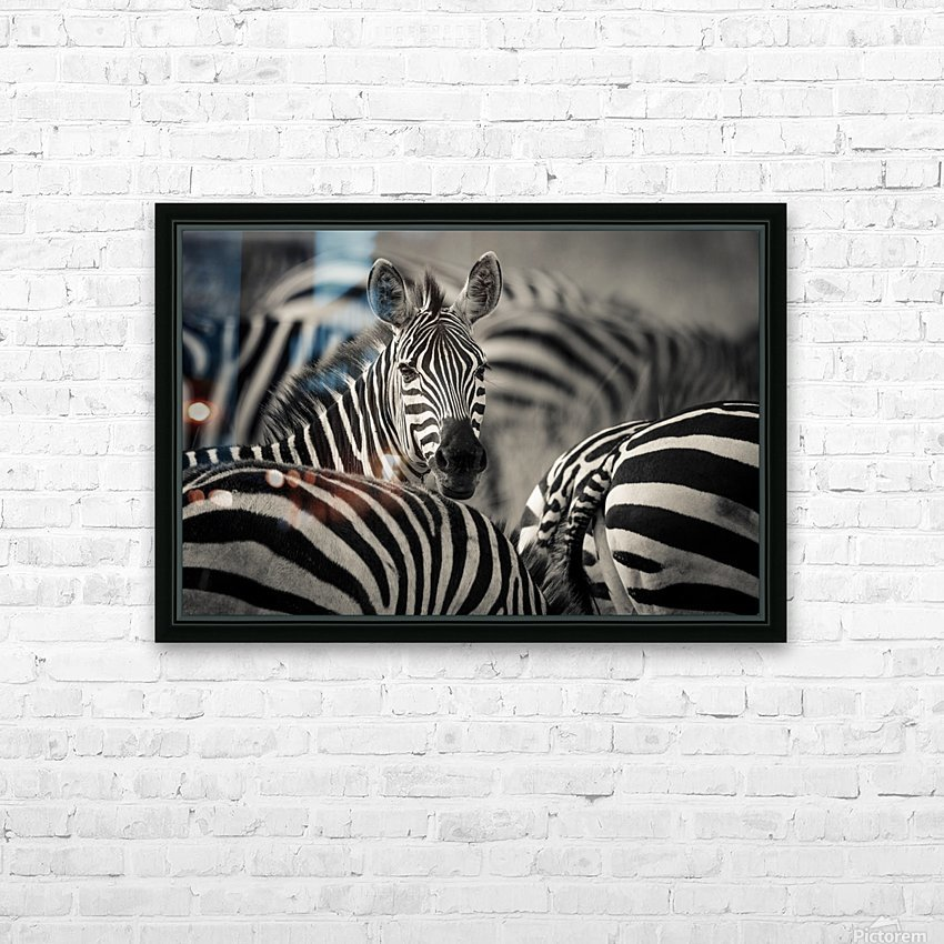 Who is there by www.jadupontphoto.com HD Sublimation Metal print with Decorating Float Frame (BOX)
