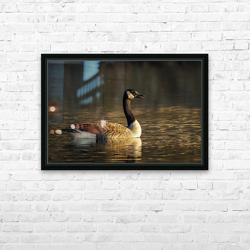 _T8C4044 HD Sublimation Metal print with Decorating Float Frame (BOX)