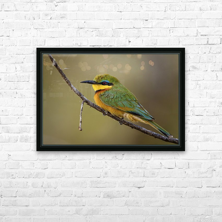164A1450 Modifier HD Sublimation Metal print with Decorating Float Frame (BOX)