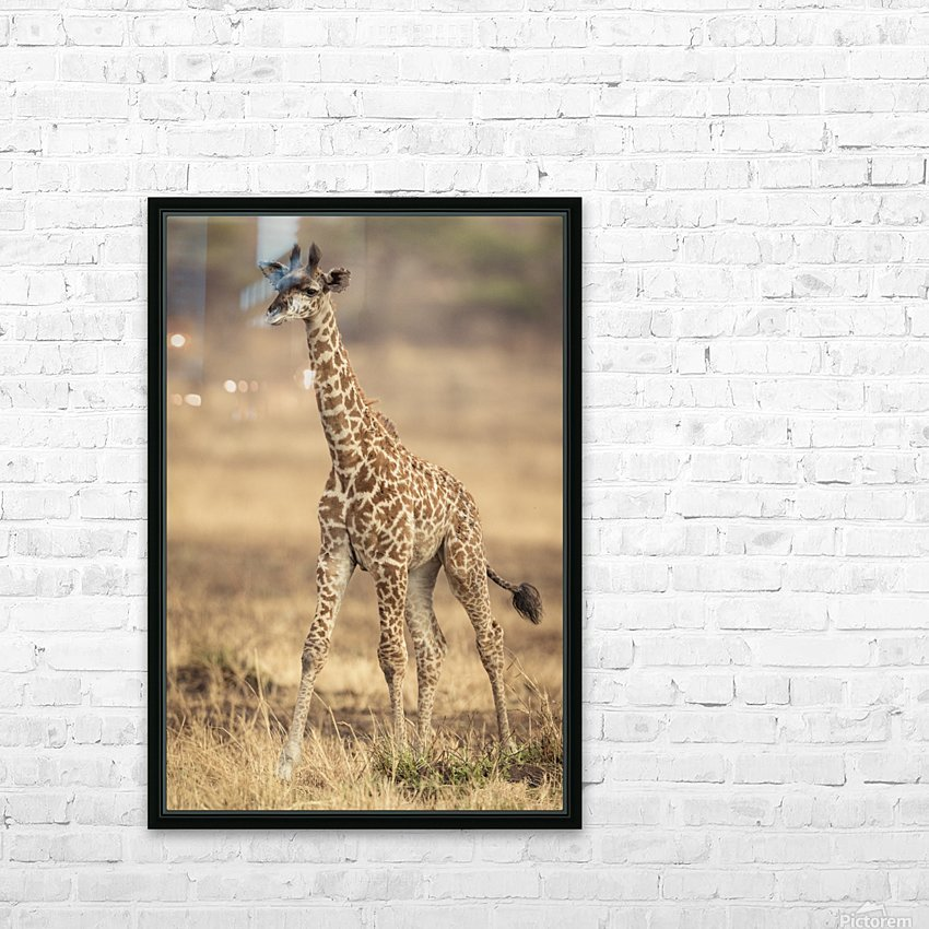 Little Girafe HD Sublimation Metal print with Decorating Float Frame (BOX)