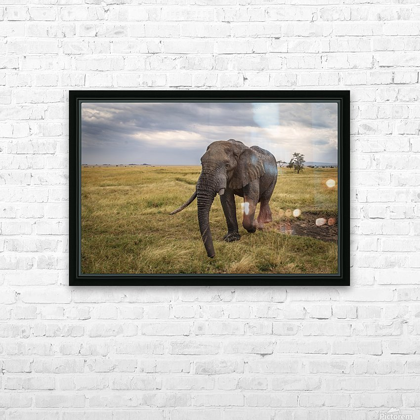 2S9A8723 Modifier 2 HD Sublimation Metal print with Decorating Float Frame (BOX)