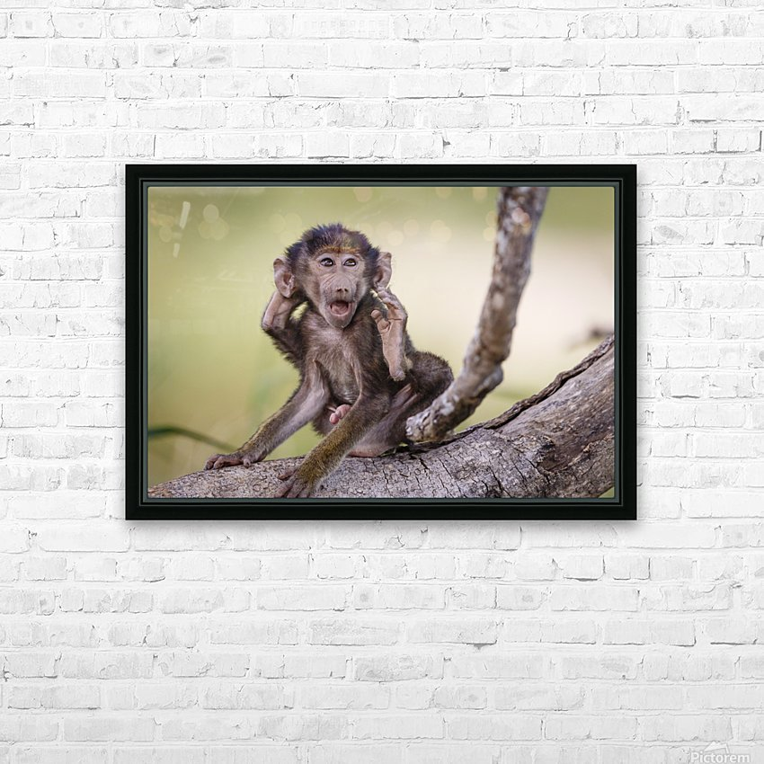 Hands-up HD Sublimation Metal print with Decorating Float Frame (BOX)