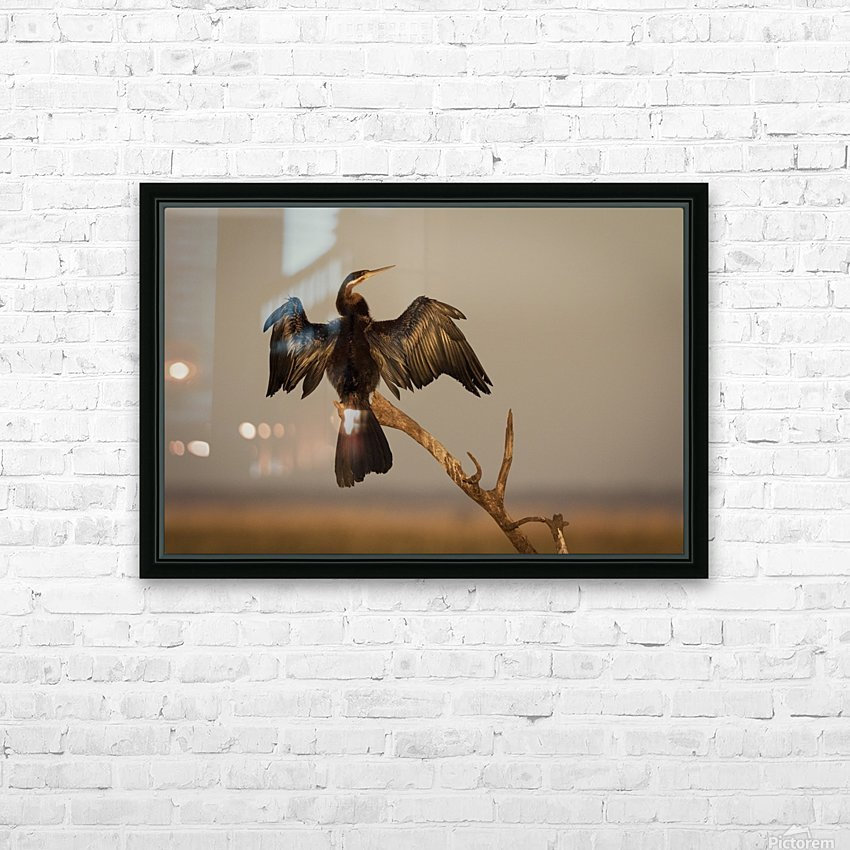 All Wings Open HD Sublimation Metal print with Decorating Float Frame (BOX)