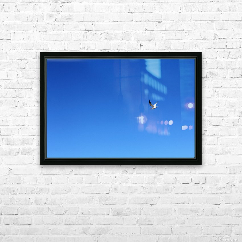 In Flight HD Sublimation Metal print with Decorating Float Frame (BOX)