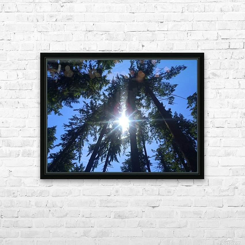 Weyerhaeuser Tree HD Sublimation Metal print with Decorating Float Frame (BOX)