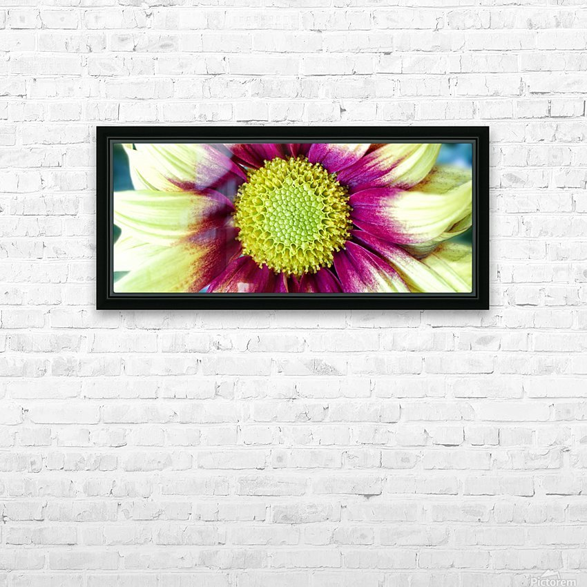 Chrysanthemum Daisy HD Sublimation Metal print with Decorating Float Frame (BOX)