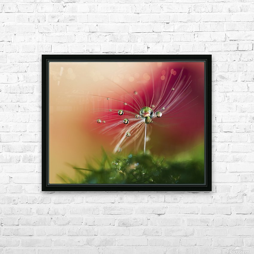 Red Morning HD Sublimation Metal print with Decorating Float Frame (BOX)