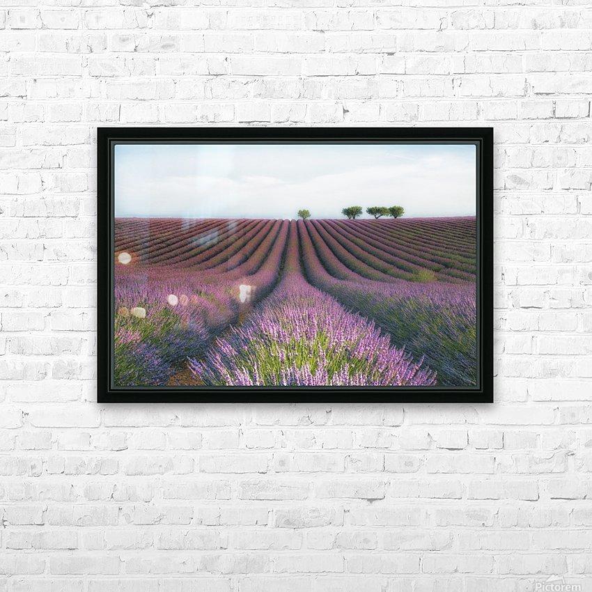 Velours de Lavender HD Sublimation Metal print with Decorating Float Frame (BOX)