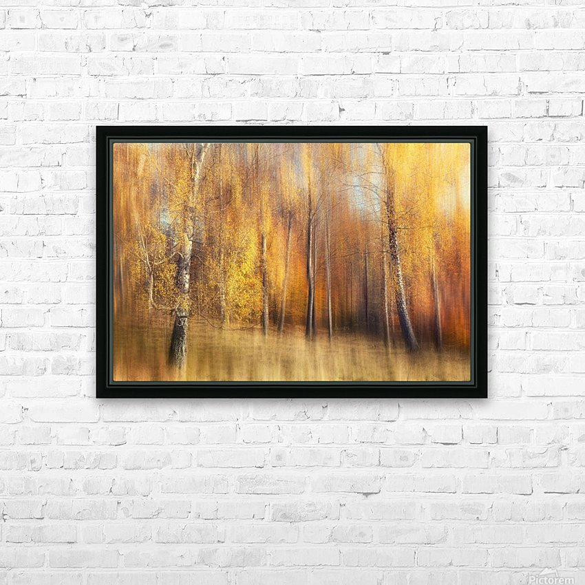 Autumn Birches HD Sublimation Metal print with Decorating Float Frame (BOX)