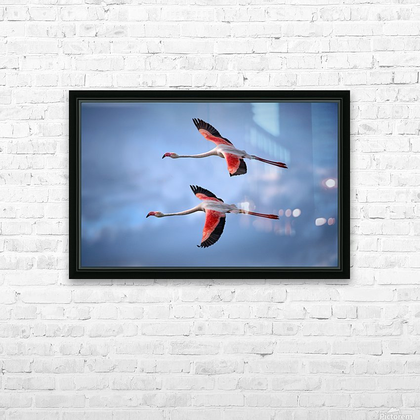 Greater Flamingos HD Sublimation Metal print with Decorating Float Frame (BOX)