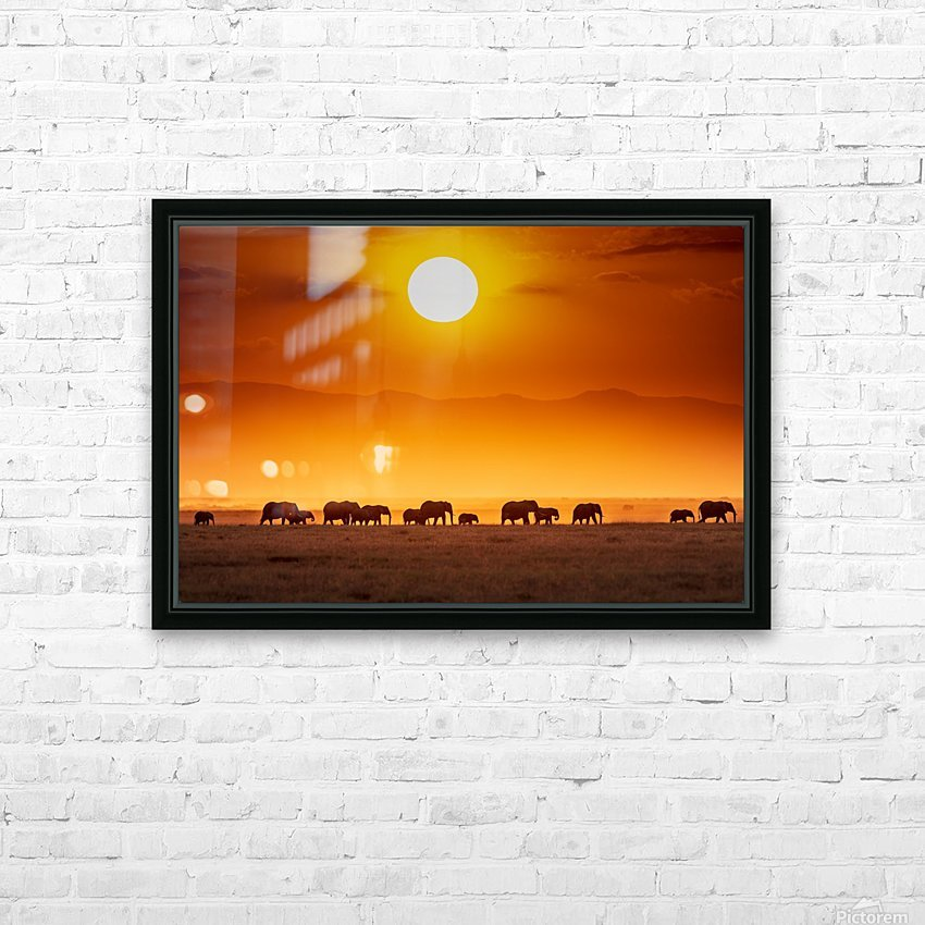 Sunrise parade HD Sublimation Metal print with Decorating Float Frame (BOX)