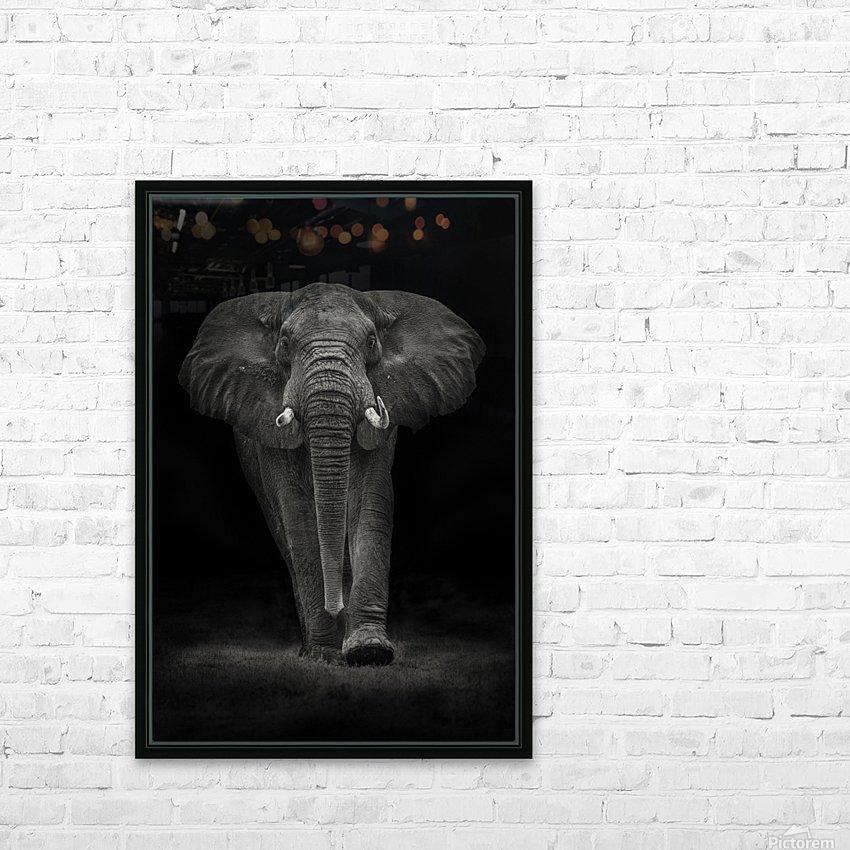 Ngorongoro Bull HD Sublimation Metal print with Decorating Float Frame (BOX)