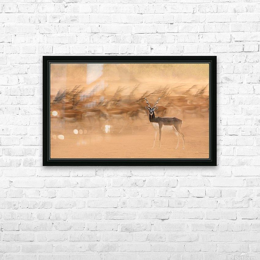 Black Bucks HD Sublimation Metal print with Decorating Float Frame (BOX)