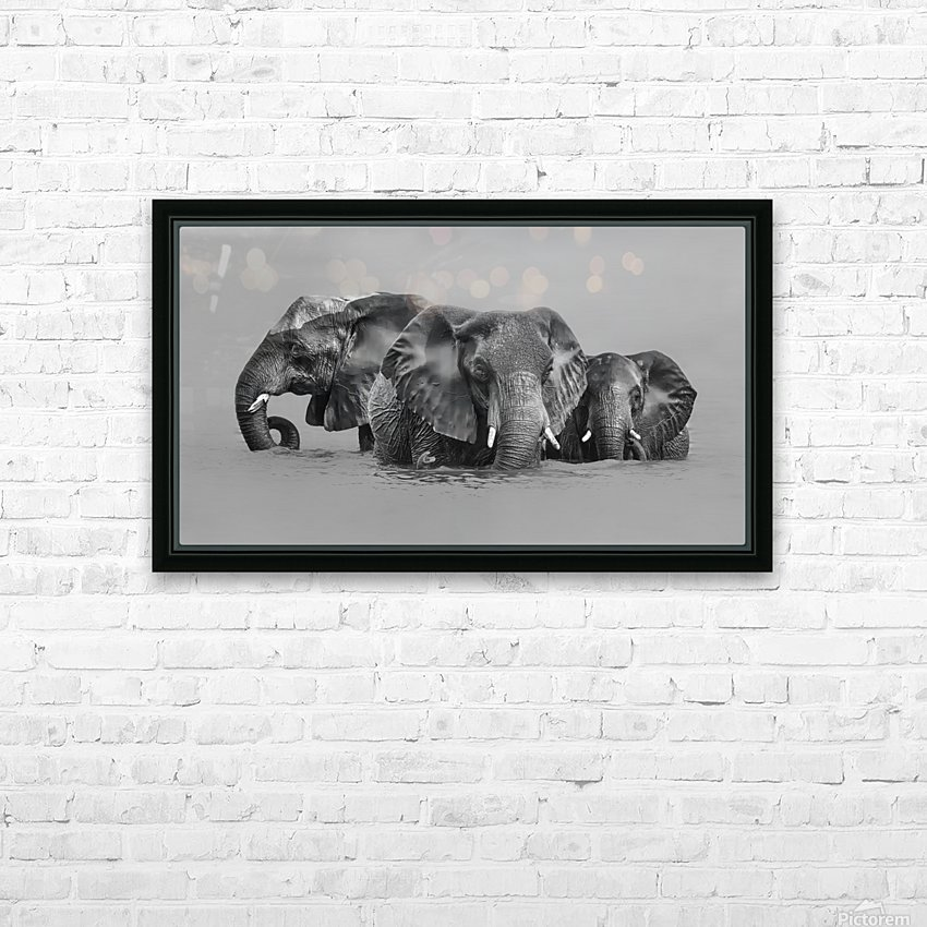 Elephant Crossing The River HD Sublimation Metal print with Decorating Float Frame (BOX)
