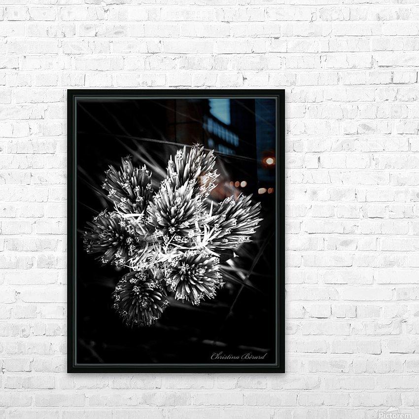 Black beauty  HD sublimation métal imprimé avec décoration flotteur cadre (boîte)