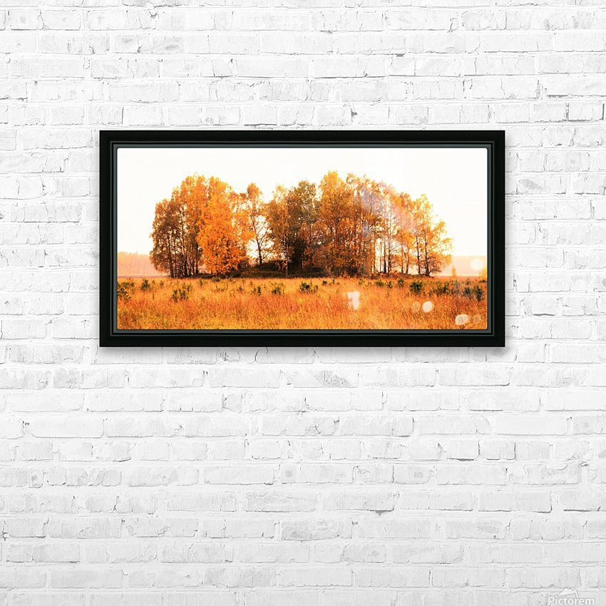 trees of fall HD Sublimation Metal print with Decorating Float Frame (BOX)