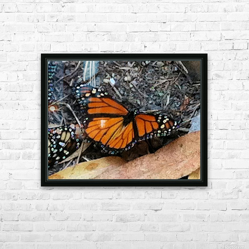Butterfly4 HD Sublimation Metal print with Decorating Float Frame (BOX)