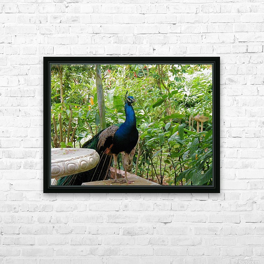 Bird24 HD Sublimation Metal print with Decorating Float Frame (BOX)