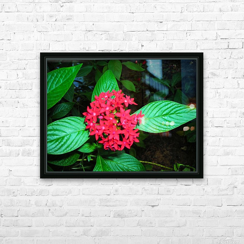 Flower66 HD Sublimation Metal print with Decorating Float Frame (BOX)