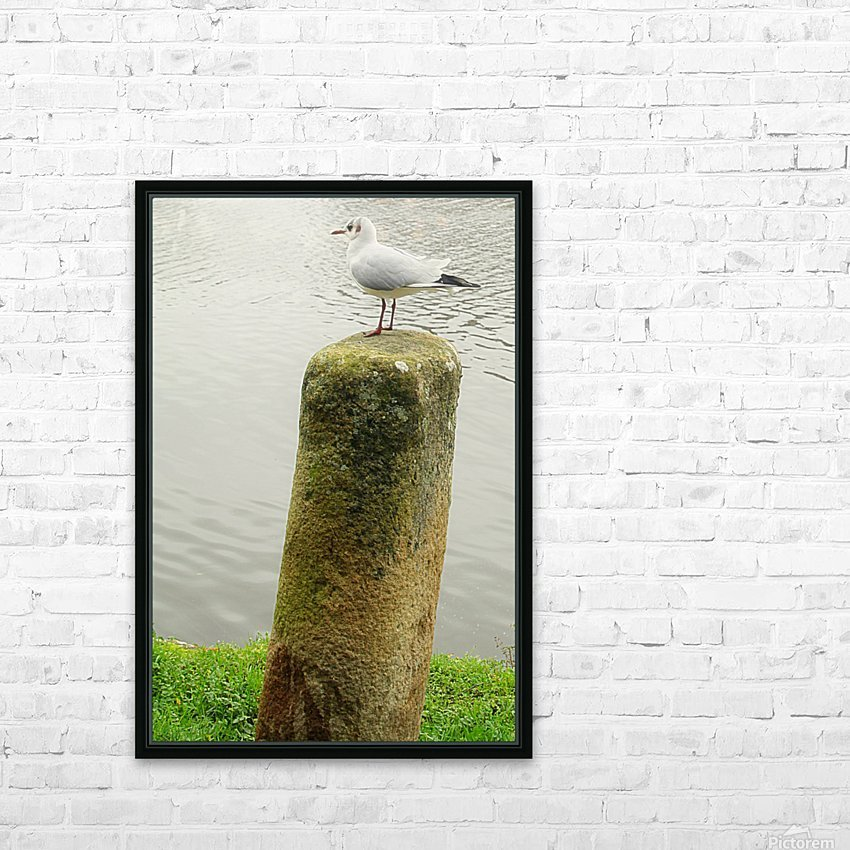 Mouette HD Sublimation Metal print with Decorating Float Frame (BOX)