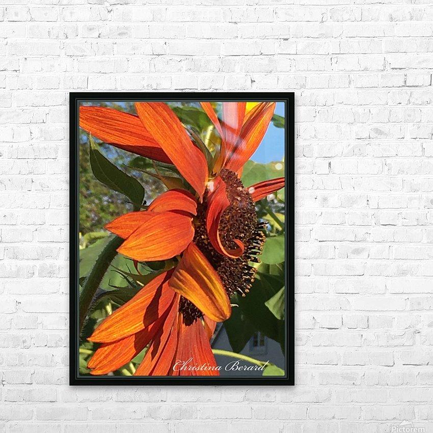 Sunflower seeds  HD sublimation métal imprimé avec décoration flotteur cadre (boîte)