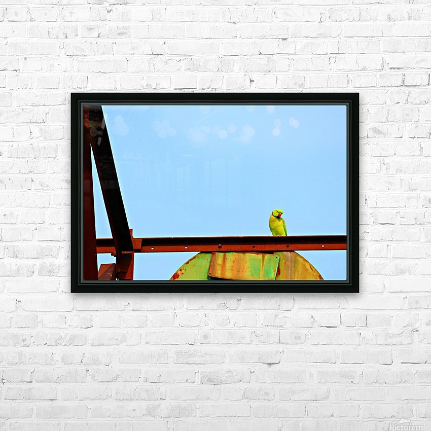 Bird 3 HD Sublimation Metal print with Decorating Float Frame (BOX)