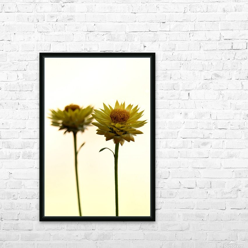 Mellow yellow HD Sublimation Metal print with Decorating Float Frame (BOX)