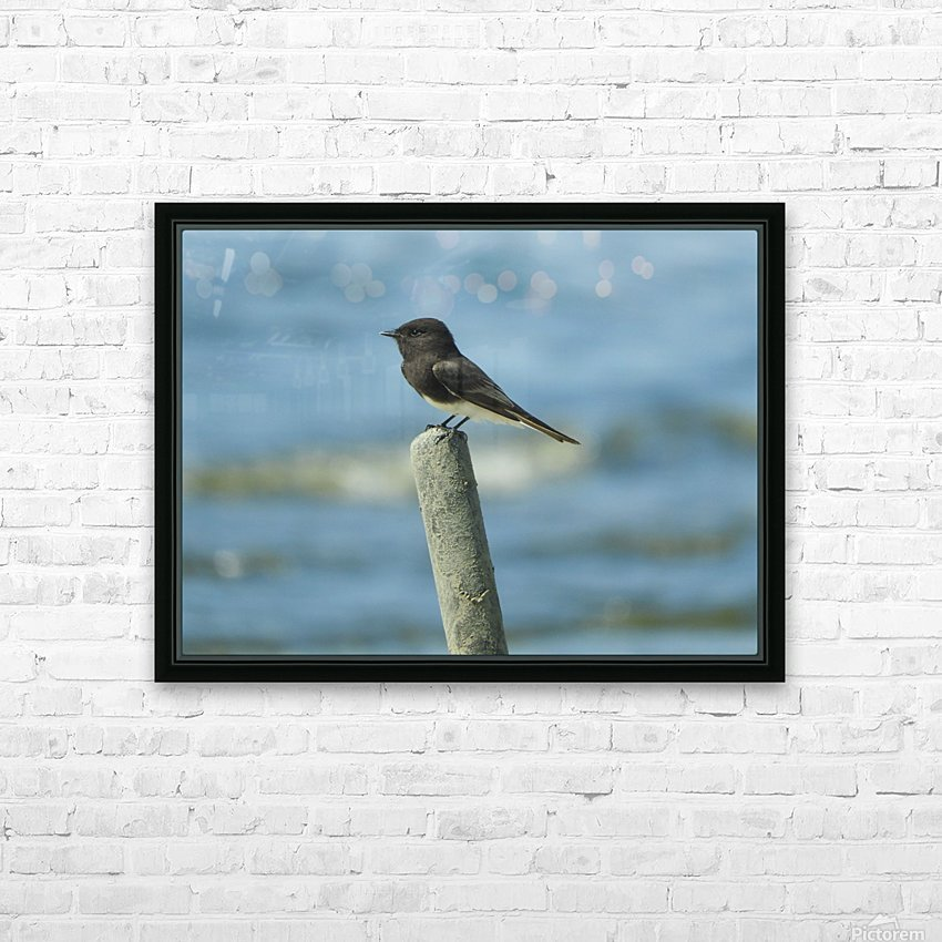 Black  Phoebe HD Sublimation Metal print with Decorating Float Frame (BOX)