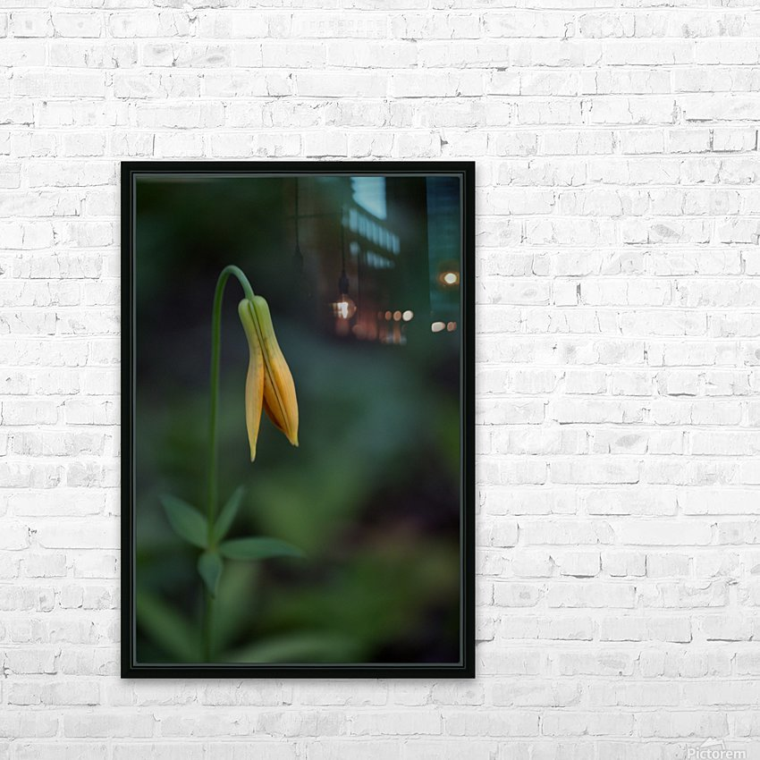 Wild tiger lily HD Sublimation Metal print with Decorating Float Frame (BOX)