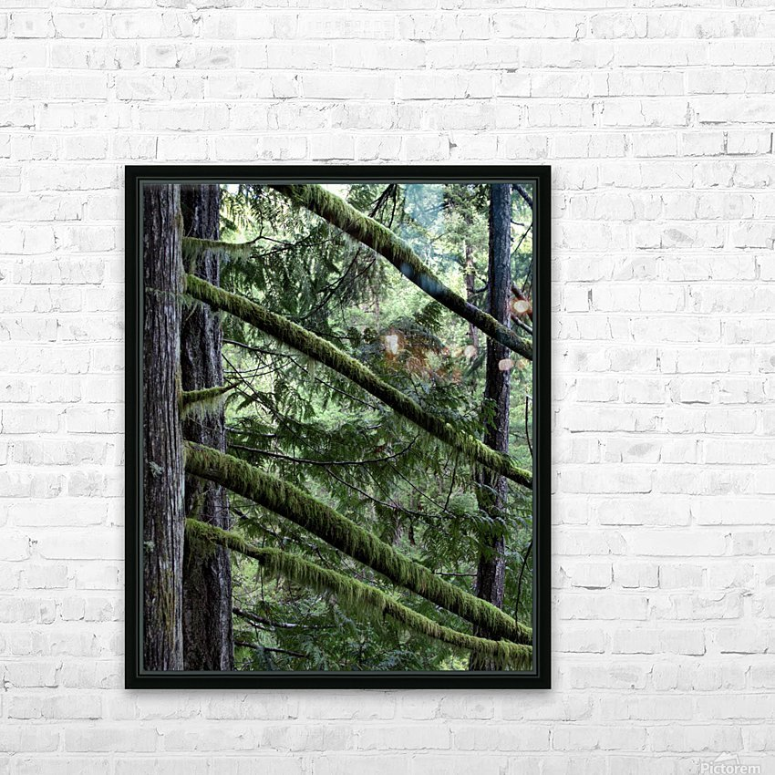 Rainforest HD Sublimation Metal print with Decorating Float Frame (BOX)