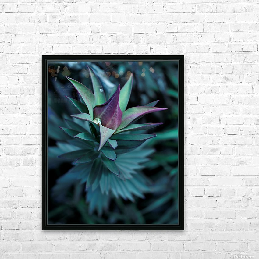 Funky flora HD Sublimation Metal print with Decorating Float Frame (BOX)