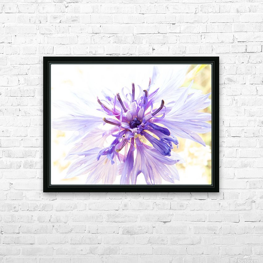 Purple Flower Burst HD Sublimation Metal print with Decorating Float Frame (BOX)