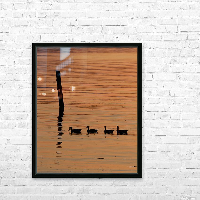Ducks in a row HD Sublimation Metal print with Decorating Float Frame (BOX)