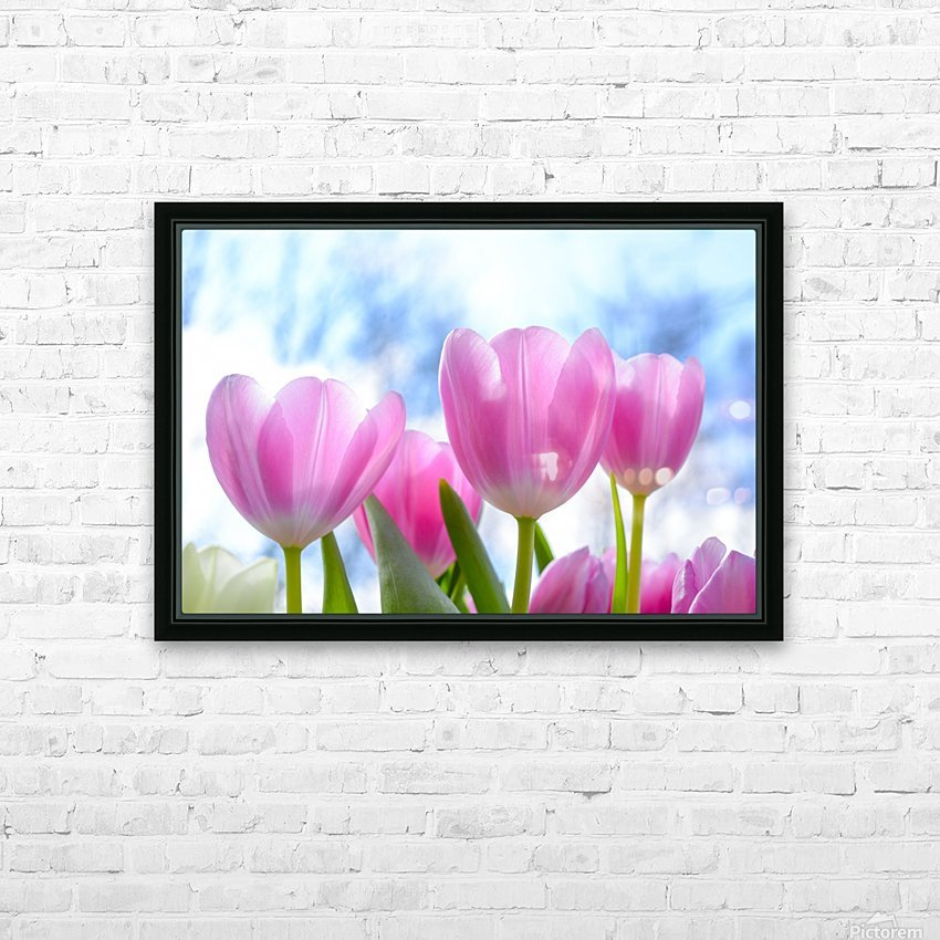 nature, tulip, flora, flower, summer, bright, petal, season, color, floral, growth, blooming, freshness, HD Sublimation Metal print with Decorating Float Frame (BOX)