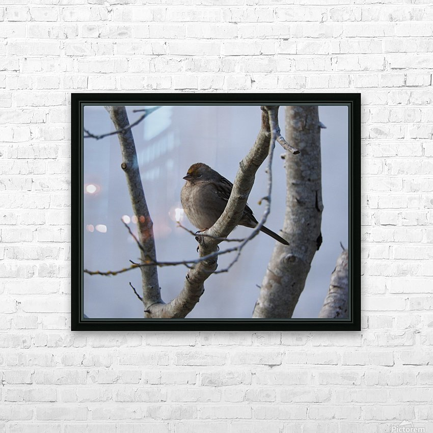 Bundled Up HD Sublimation Metal print with Decorating Float Frame (BOX)