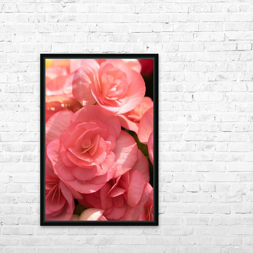 Pink pastel flower HD Sublimation Metal print with Decorating Float Frame (BOX)