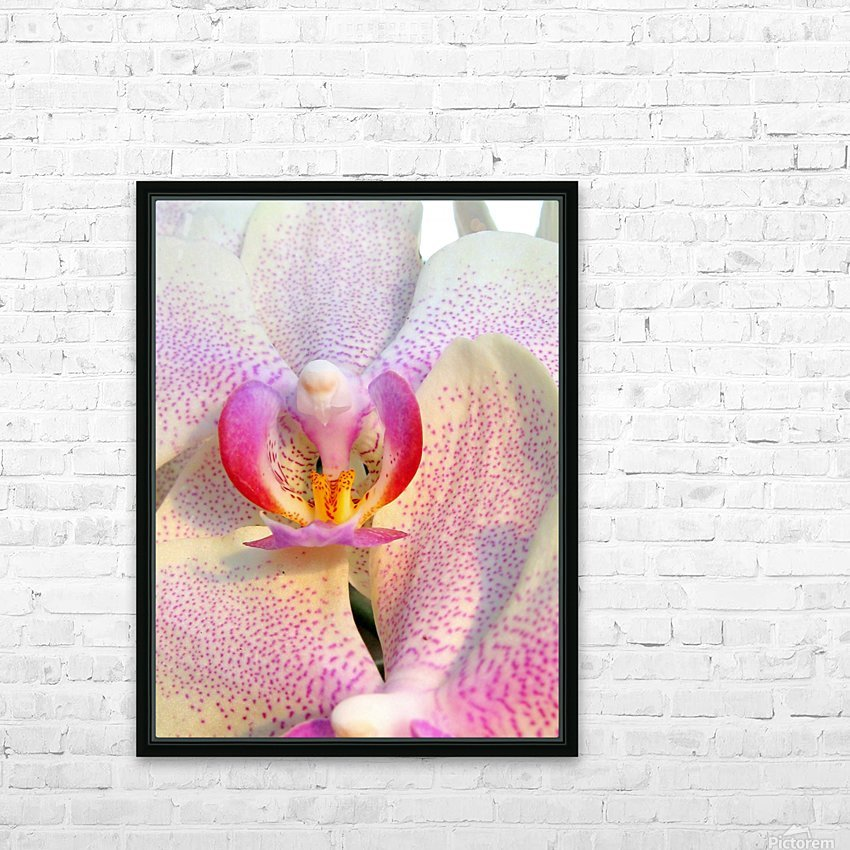 Spotted Orchid  HD Sublimation Metal print with Decorating Float Frame (BOX)