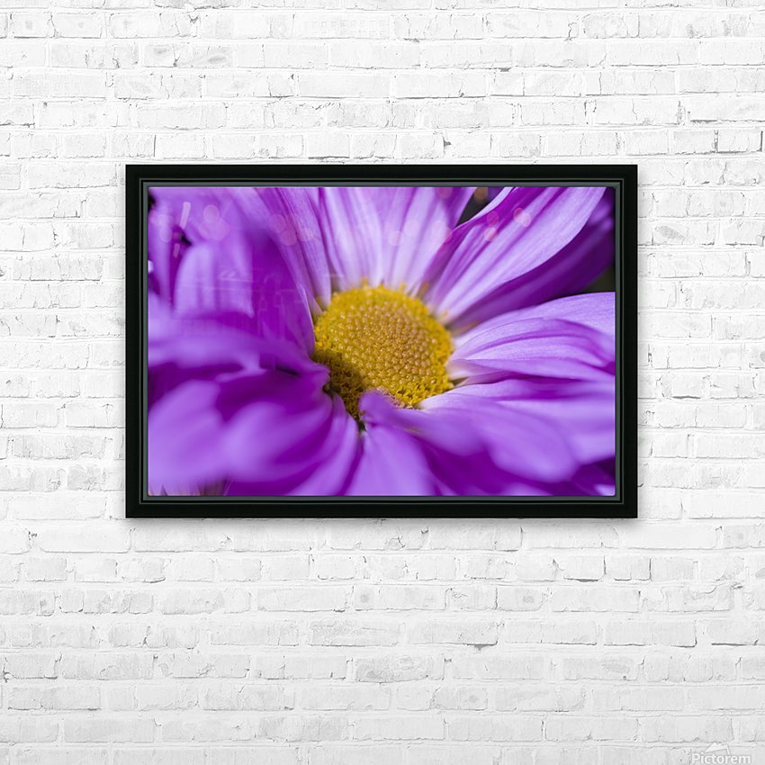 Chrysanthemum HD Sublimation Metal print with Decorating Float Frame (BOX)