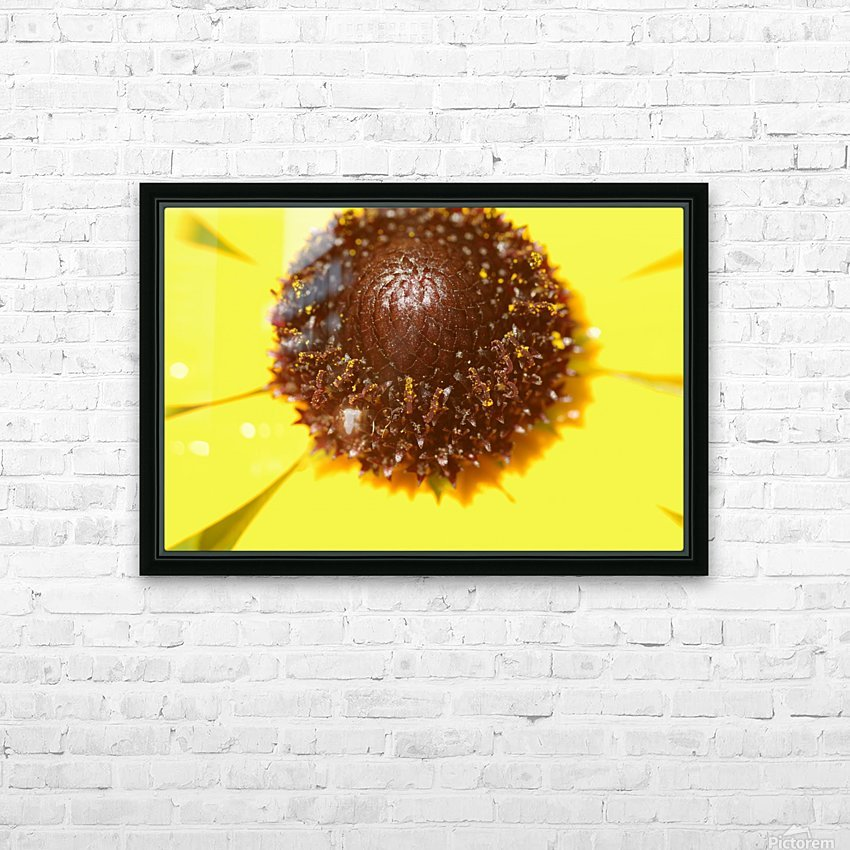 Brown eyed Susan Macro HD Sublimation Metal print with Decorating Float Frame (BOX)