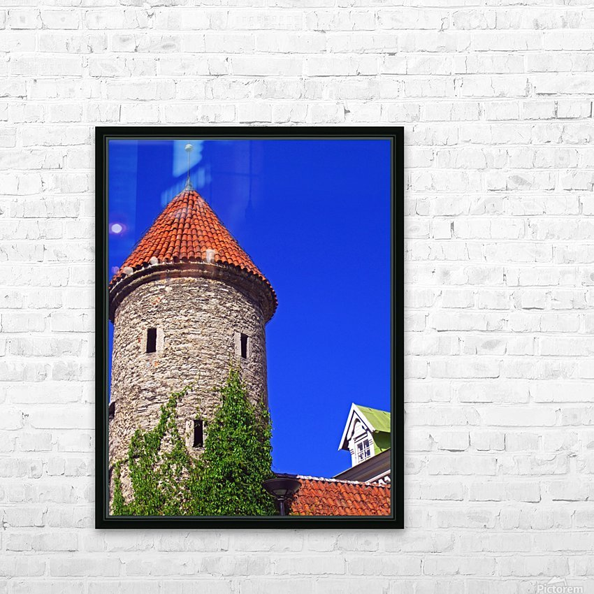 Castle Vines HD Sublimation Metal print with Decorating Float Frame (BOX)