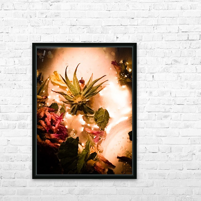 Bird of paradise  HD sublimation métal imprimé avec décoration flotteur cadre (boîte)
