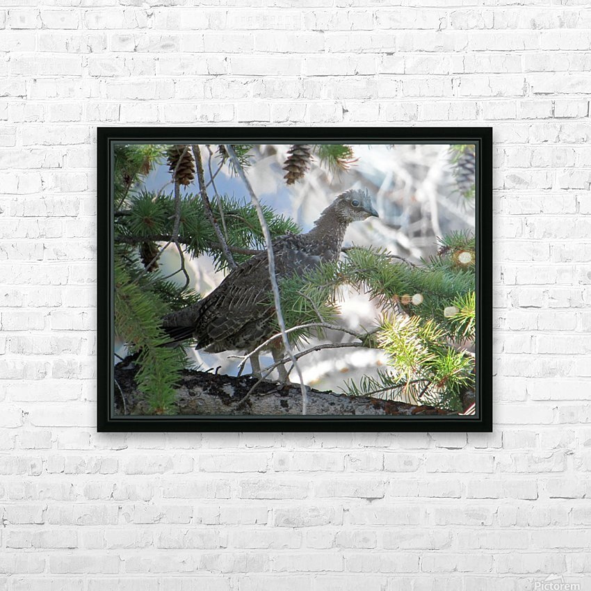 ruffed HD Sublimation Metal print with Decorating Float Frame (BOX)