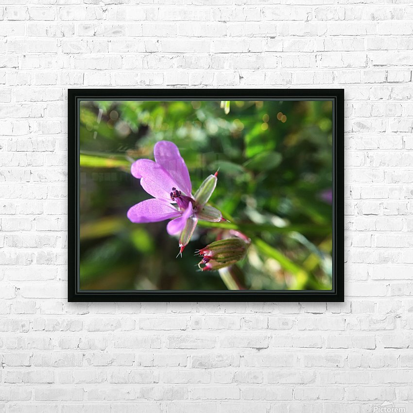 IMG_3451 HD Sublimation Metal print with Decorating Float Frame (BOX)