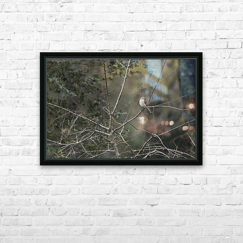 Resting Mockingbird HD Sublimation Metal print with Decorating Float Frame (BOX)
