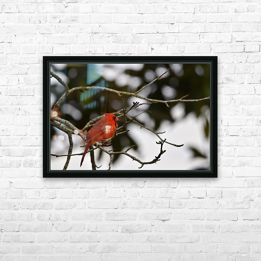 Cardinals 4 HD Sublimation Metal print with Decorating Float Frame (BOX)