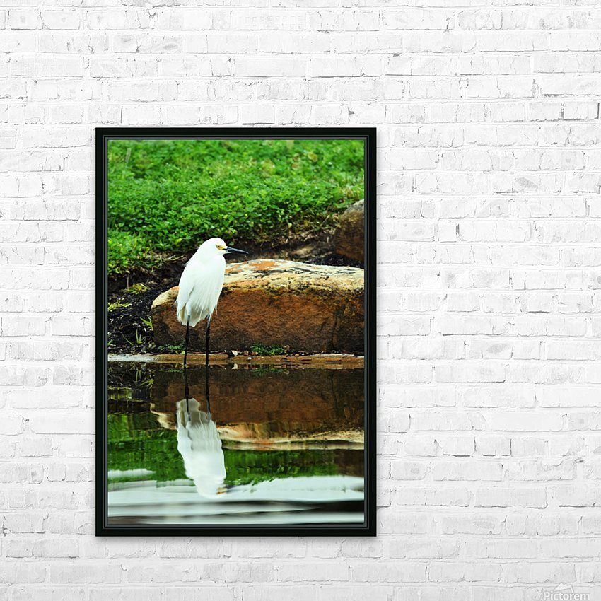 Snowy Egret HD Sublimation Metal print with Decorating Float Frame (BOX)