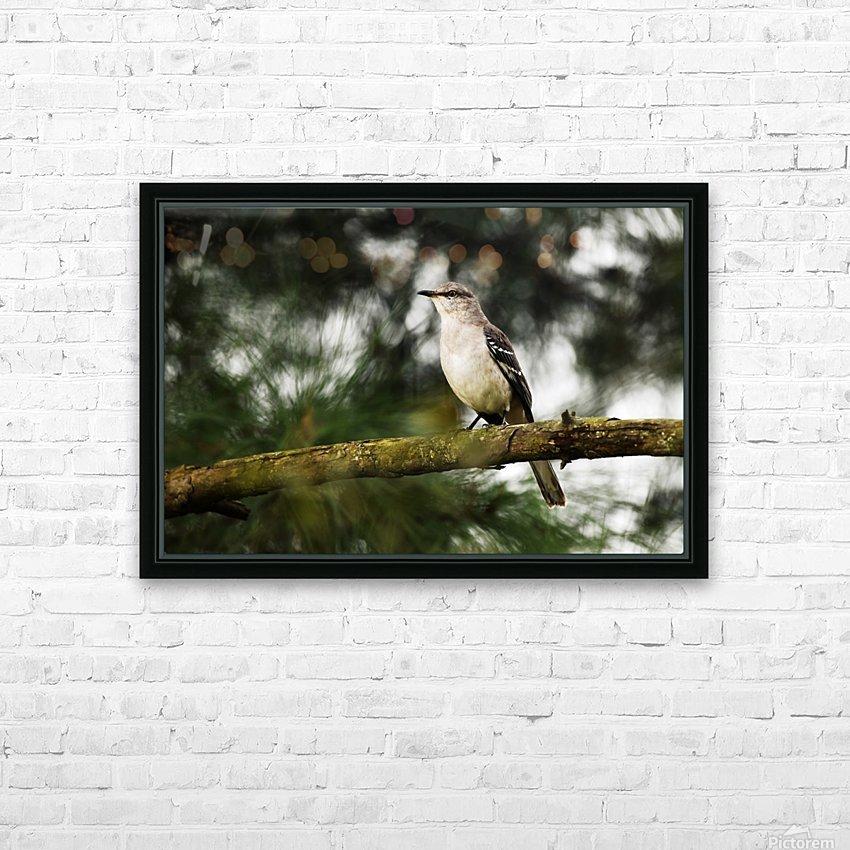 Mockingbird HD Sublimation Metal print with Decorating Float Frame (BOX)