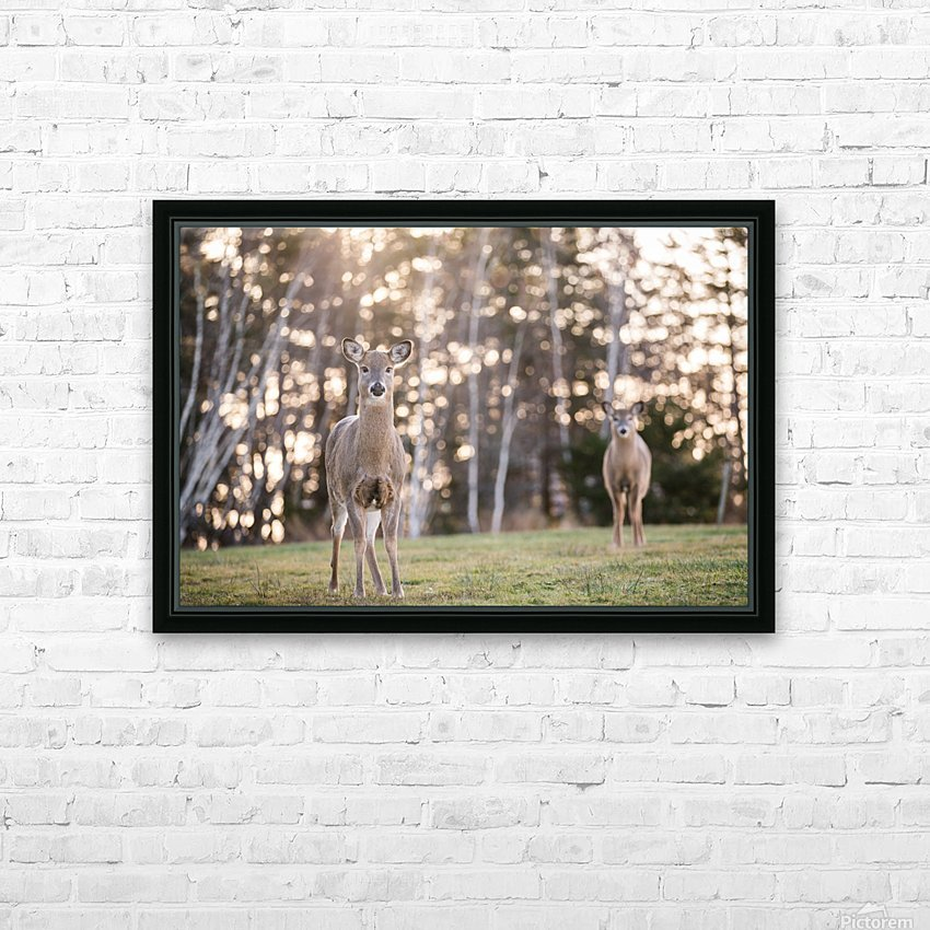 In the field HD Sublimation Metal print with Decorating Float Frame (BOX)