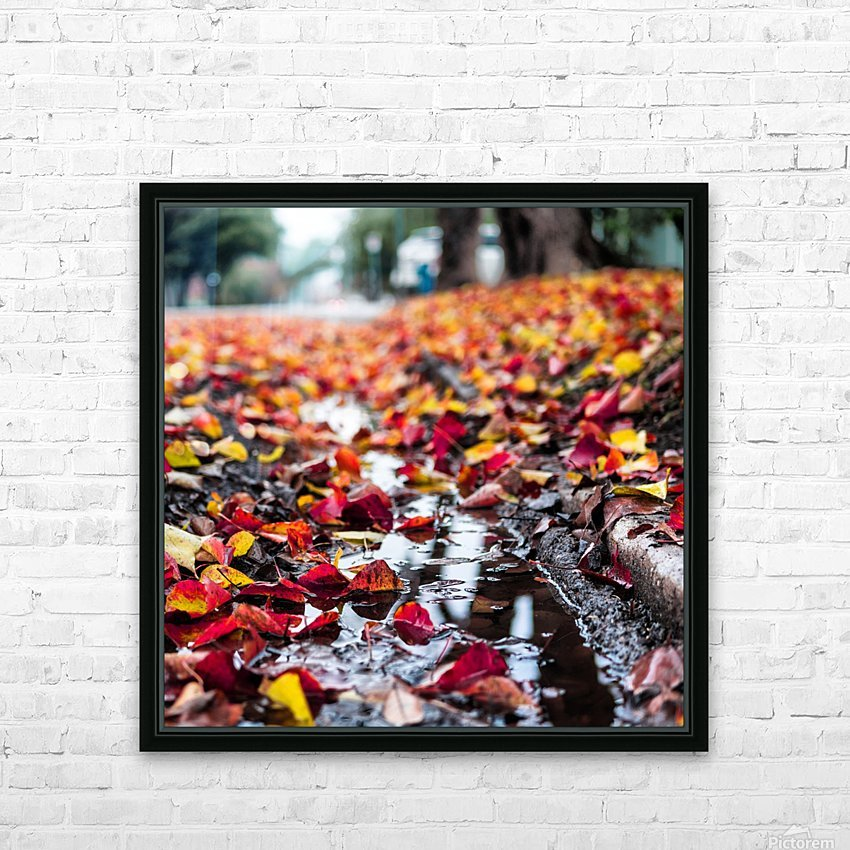 The Colors of Fall HD Sublimation Metal print with Decorating Float Frame (BOX)